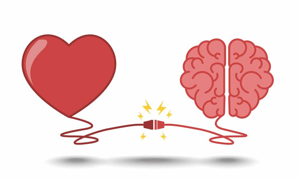 cerebro, hormonas, subir de peso, enamoramiento